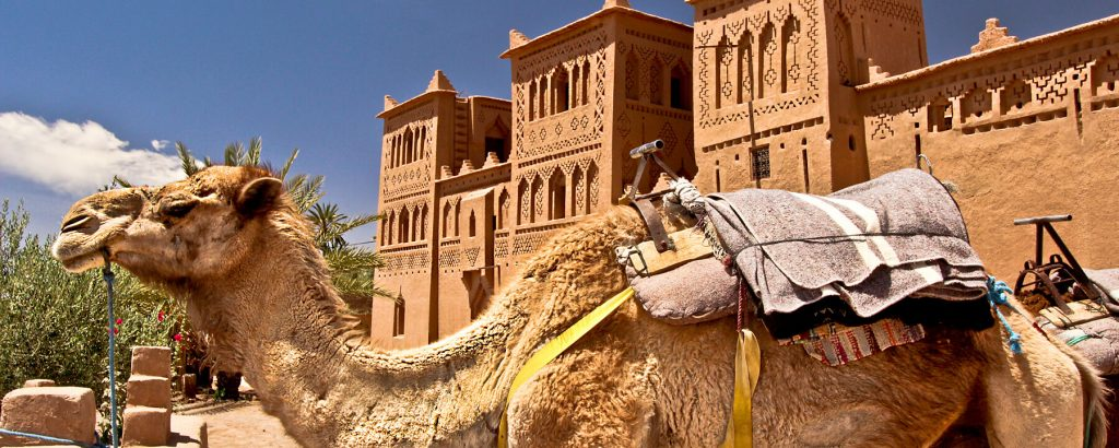Excursions from Ouarzazate