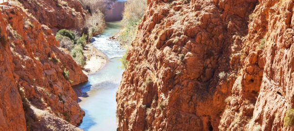 Dades Gorge camel trekking tour
